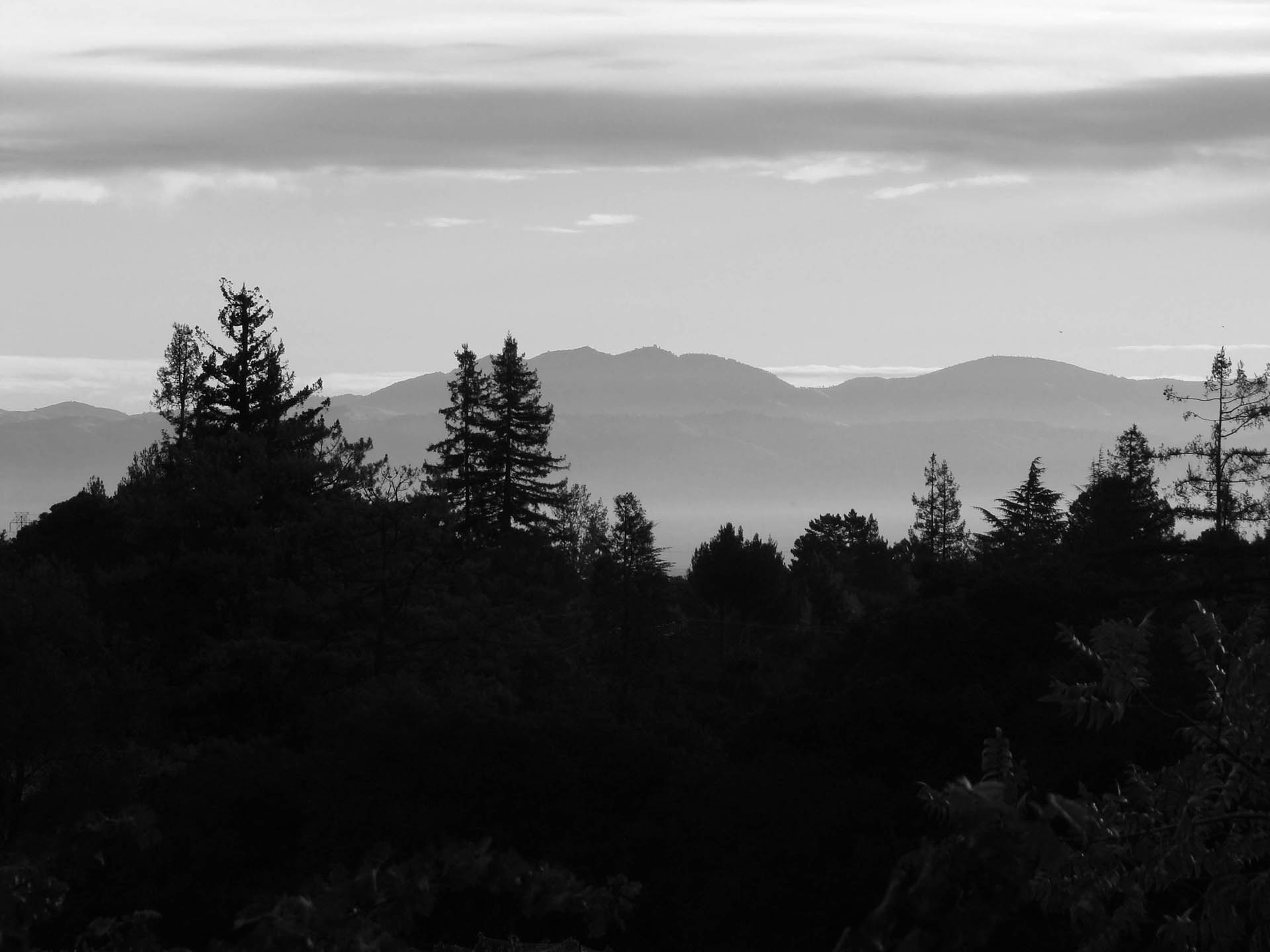 Image of Santa Cruz Mountains from Kathryn Kennedy Winery